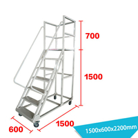 Warehouse Ladder LT-12