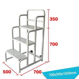 Warehouse Ladder LT-22