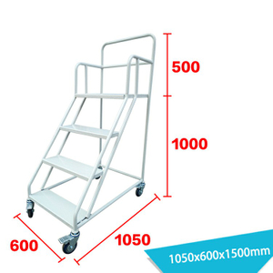 Warehouse Ladder LT-8